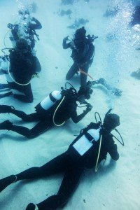 PADI refresher Course - Perth Ocean