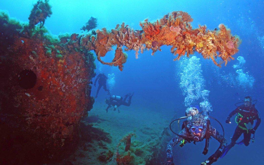 Diving specialities